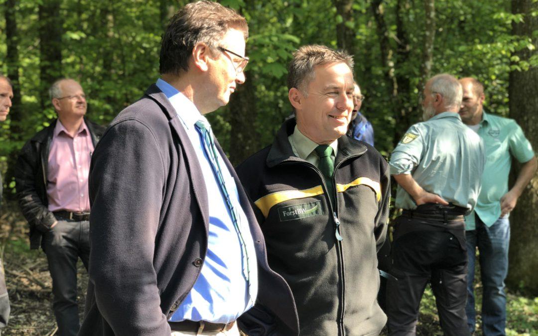 Das Land unterstützt Waldbesitzer bei Schadensereignissen