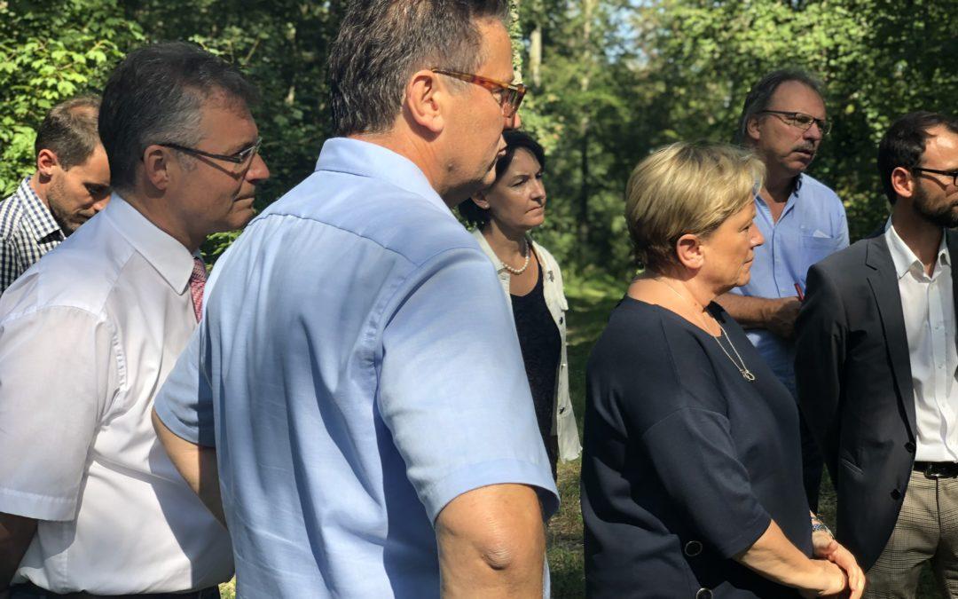 Mit Ministerin Eisenmann zur Besichtigung von Waldschäden