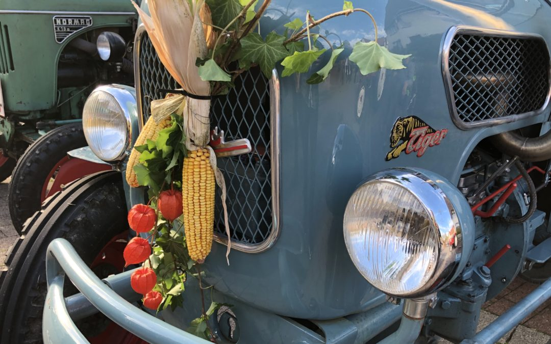 Herbstmärkte locken Besucher – Werbung für die Region