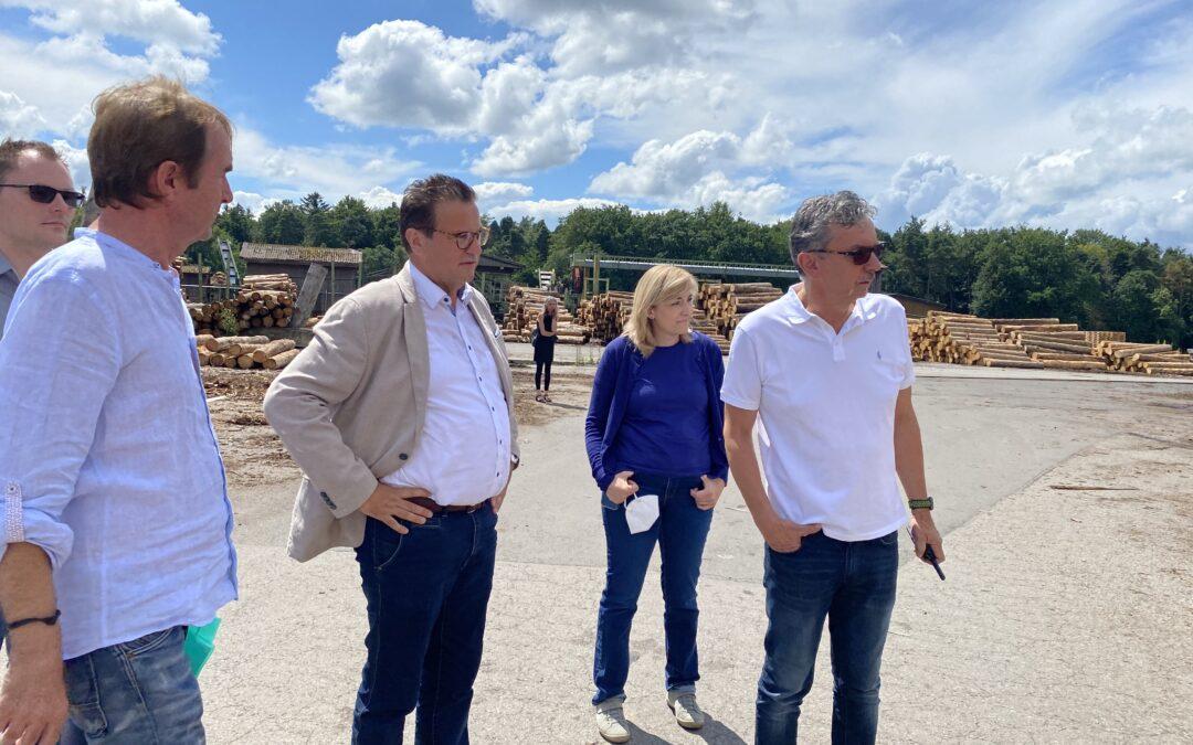 Nachfrage nach Holz ungebrochen – Wald als Lebenselixier