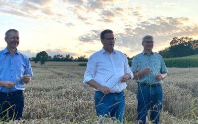 Überblick über die Getreideernte 2021